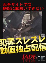 マニアック動画JADE NET